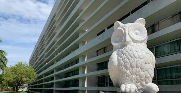 Owl in front of the Wimberly Library on the Boca Raton Campus
